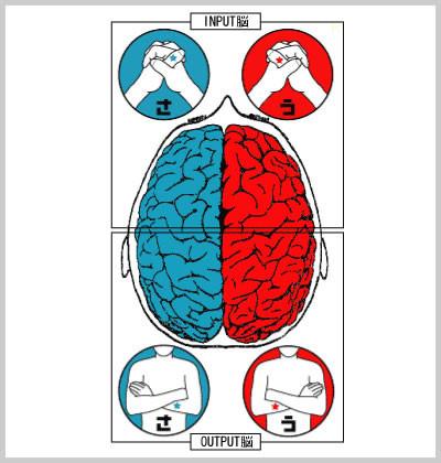 右脳左脳.jpg